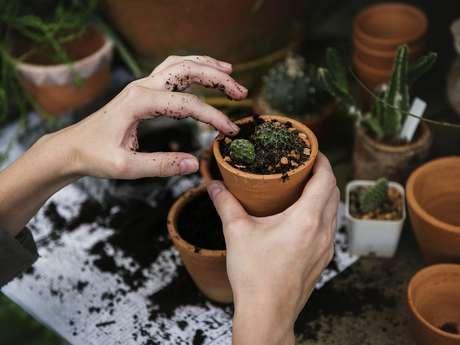 Bourse aux plantes organisé par les jardins du jeudi