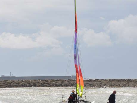 REGATE LIGUE CATAMARAN