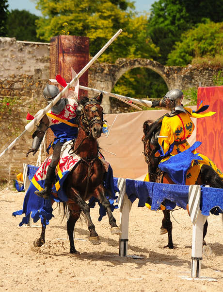 Spectacle chevaux et rapaces