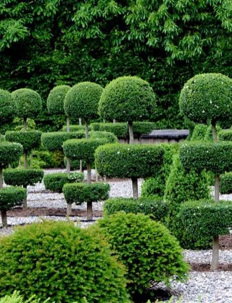 Journées Européennes du Patrimoine au Jardins Sothys