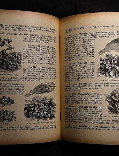 Les Rencontres Littéraires de Prayssac: Librairie Ephémère