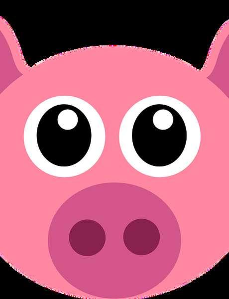 """Fête du Cochon """"Les Irréductibles et le Cochon Magix"""" de Neuville"""