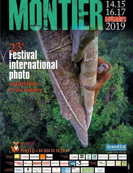 Festival Photo Montier