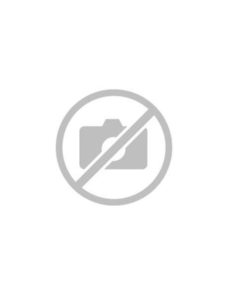 Discover the Esseillon fortifications