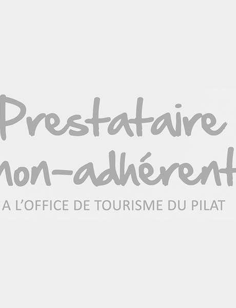 """Exposition : Le Héron cendré"""""""