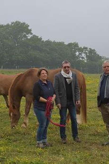 Conférence // L'influence du cheval dans le patrimoine communal du 12è siècle à nos jours
