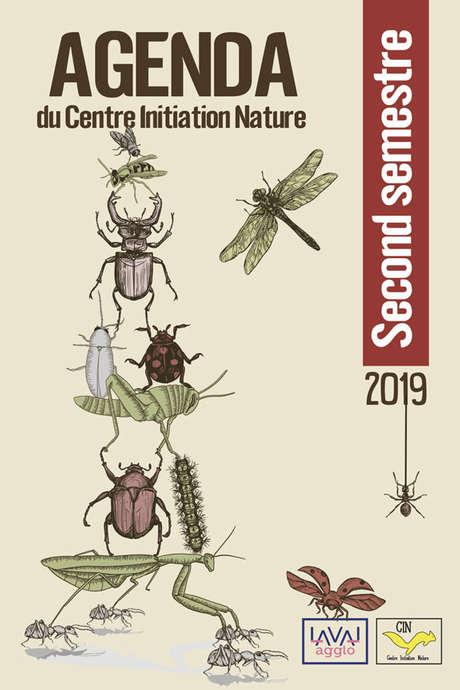 Fabrication d'insectes en récup | Atelier nature dès 8 ans