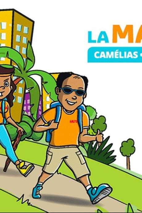 La marche : Camélias / Montgailard