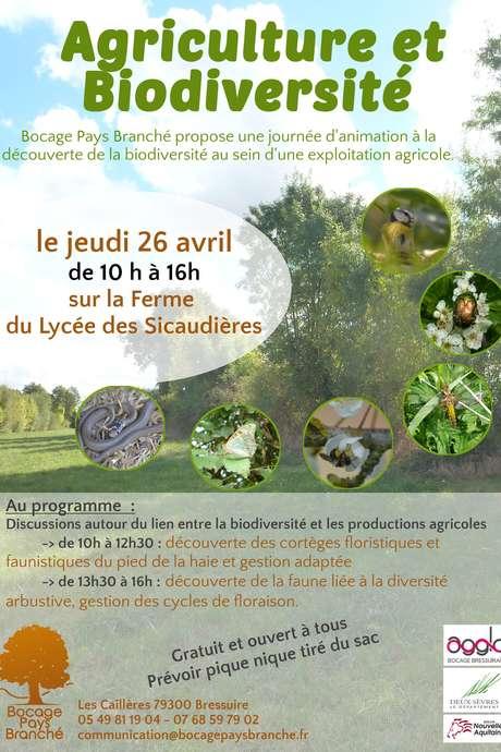 Agricutlure et Biodiversité