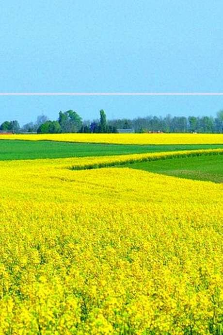 Découvrez un village de Beauce : Selommes