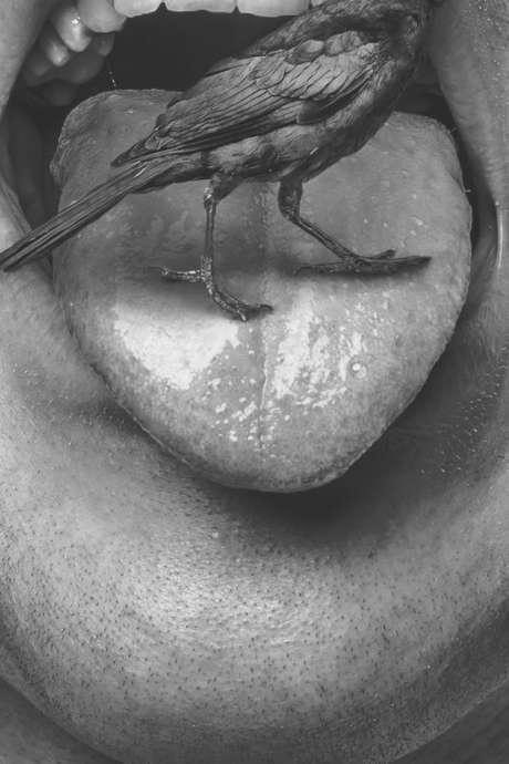 """""""A cor et à cri"""" par l'ensemble Ottovocale, direction Diego Borrello"""