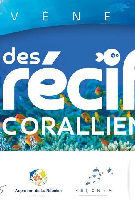 Découverte des récifs coralliens