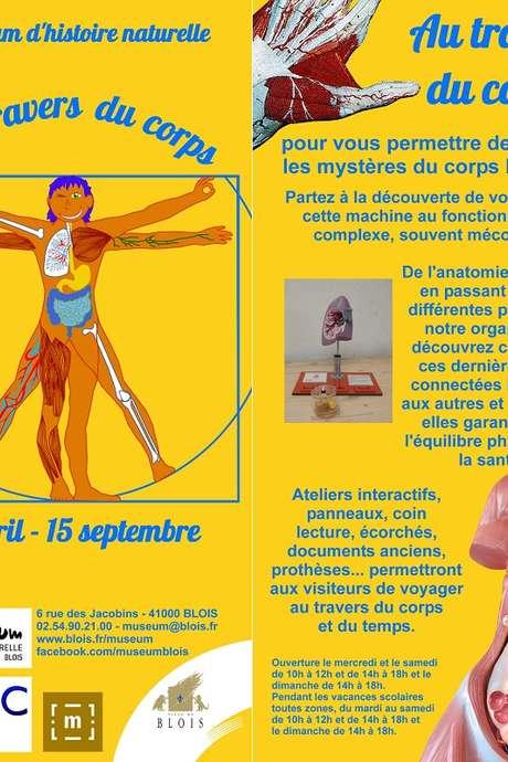 """Exposition """"Au travers du corps"""""""