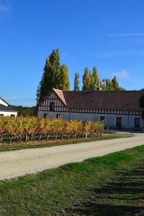 Visite gourmande Domaine Le Portail