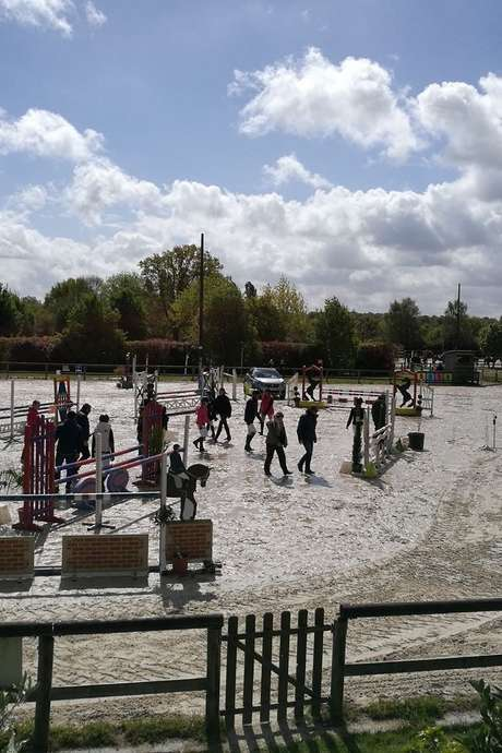 Concours de sauts d'obstacles