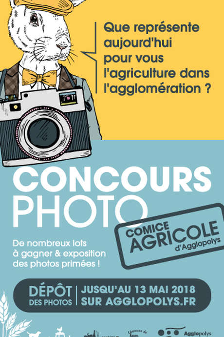 Concours photo : Comice agricole