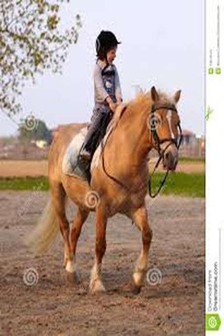 Horse'circus vacances scolaires