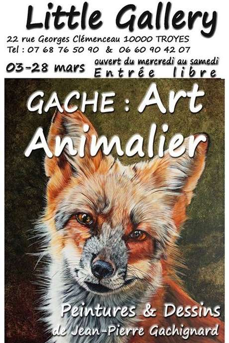 Exposition - Gache : Art Animalier