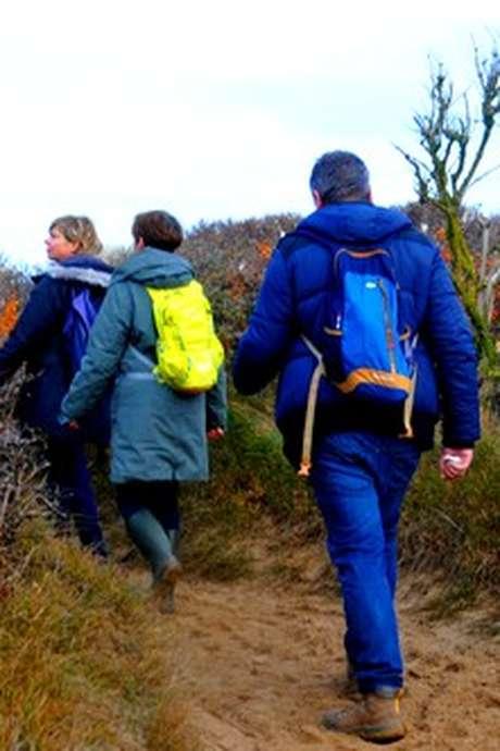 Randonnée Au pied des falaises du cap Blanc-Nez, à marée basse, via les collines des Noires Mottes, au départ de Sangatte