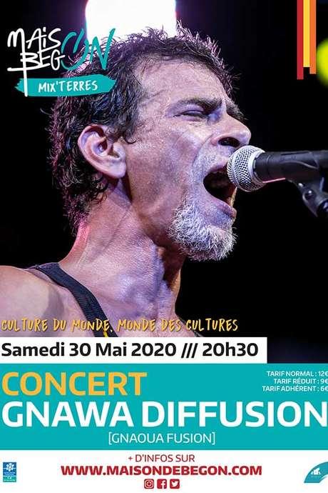 Concert : Gnawa Diffusion