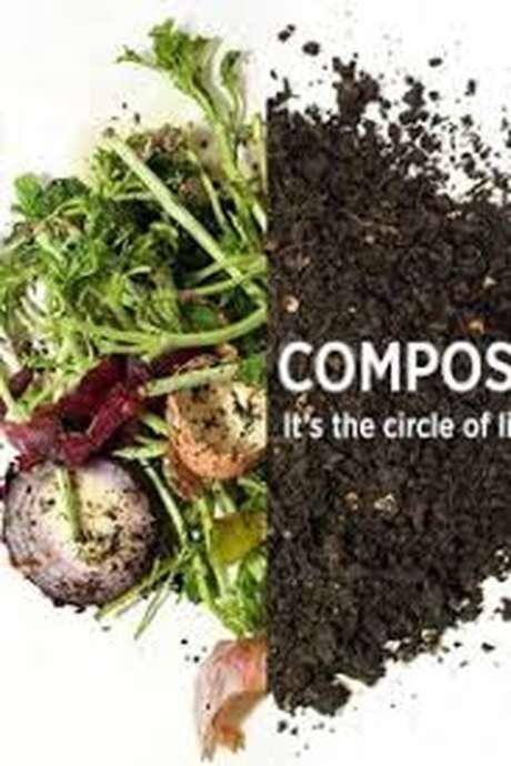 Pour tout savoir sur le compost  // Centre Initiation Nature