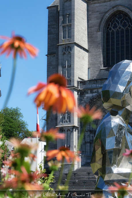 Visite guidée: l'Art en Ville