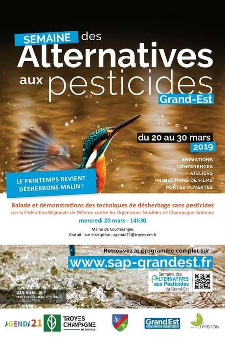 Balade et démonstrations des techniques de désherbage sans pesticides