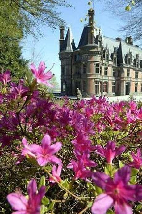 Trévarez en Rhododendron