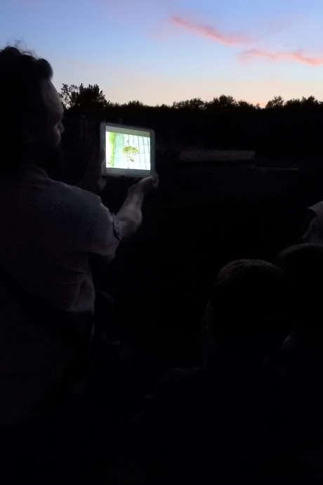 Les Estivales : Visite commentée aux flambeaux