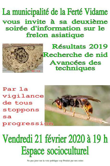 Soirée information sur le frelon asiatique