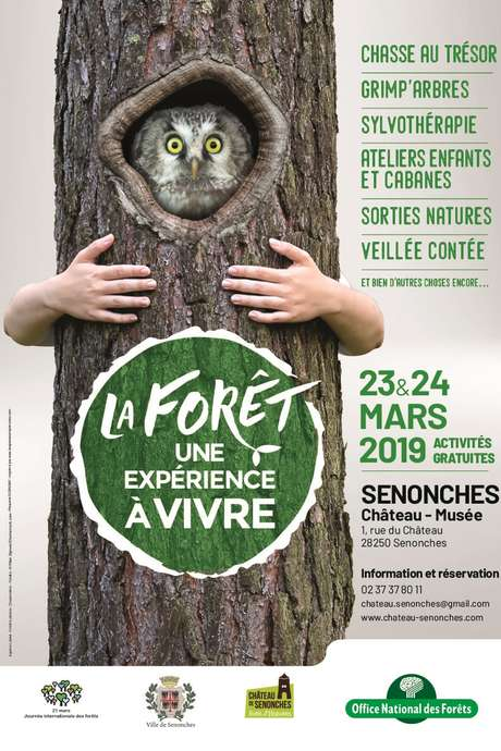 La Forêt une expérience à vivre