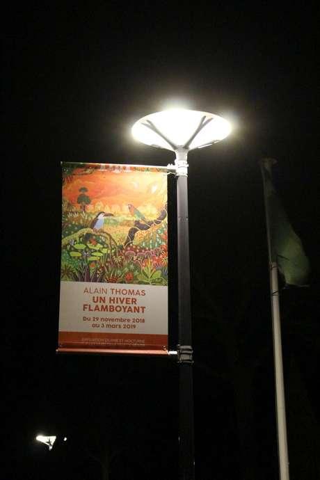 """Exposition Alain Thomas """"Un hiver Flamboyant"""" à Hénon"""