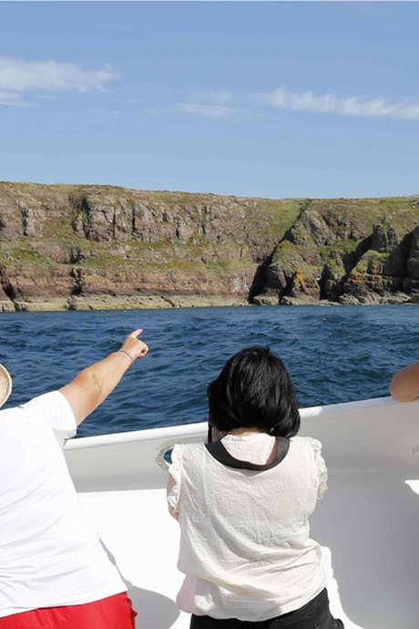Excursion en mer autour des Caps d'Erquy et de Fréhel