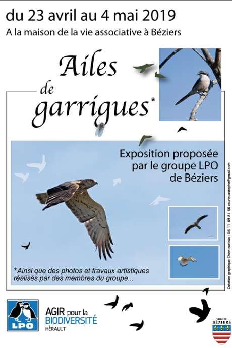 EXPOSITION AILES DE GARRIGUES