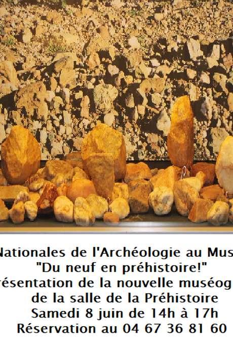 JOURNÉES NATIONALES DE L'ARCHÉOLOGIE : DU NEUF EN PRÉHISTOIRE!