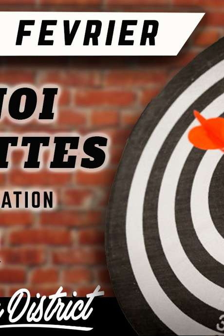 TOURNOI DE FLECHETTES DARTSLIVE FRANCE
