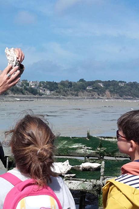 Balades sur le littoral - Au coeur des parcs à huîtres