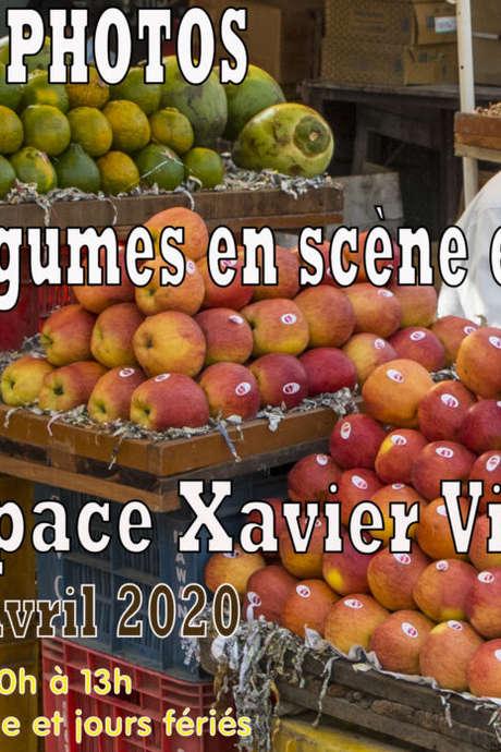 EXPOSITION PHOTOS FRUITS ET LÉGUMES EN SCÈNE ET EN COULEUR