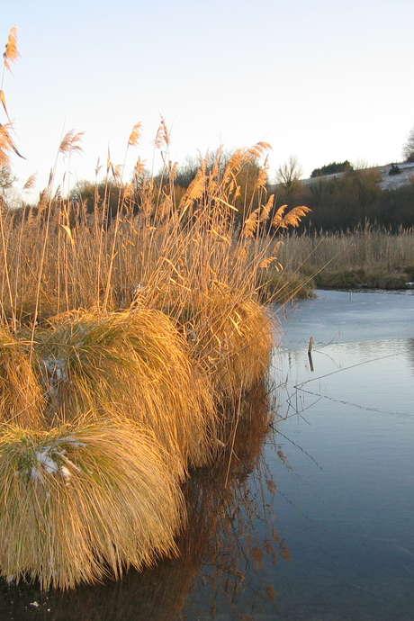 Le Marais en Hiver