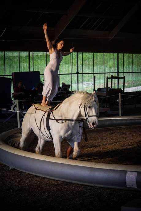 Stage de Cirque et de Voltige à Cheval