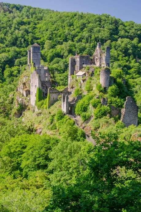 """Tours de Merle : """"Les ARBRES - Balade Nature"""""""
