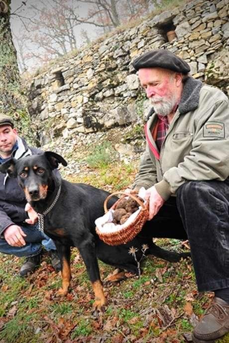 Escapade Gourmande dans les Truffières