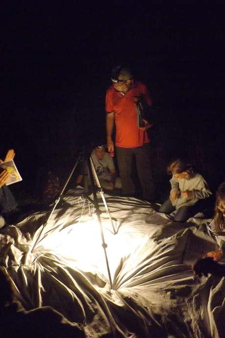 La Biodiversité la Nuit au Marais de Bonnefont