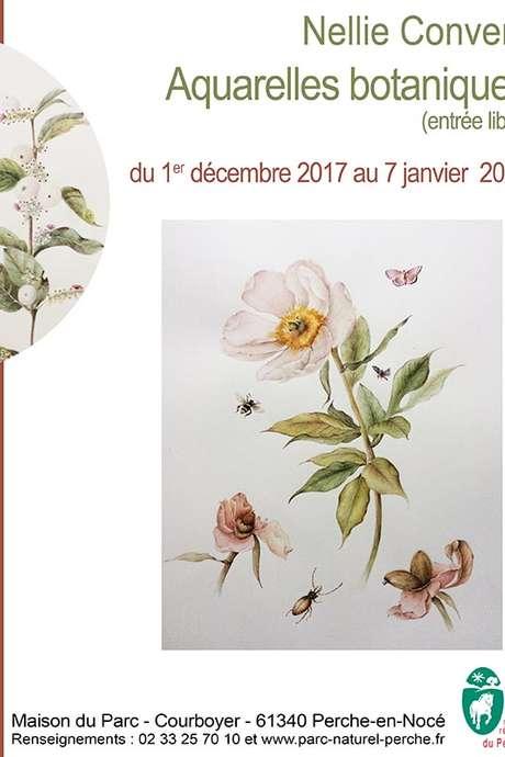 Exposition : Aquarelles botaniques de Nellie Convers