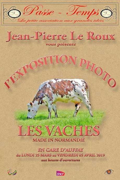 "Exposition Photo "" Les Vaches made in Normandie"""