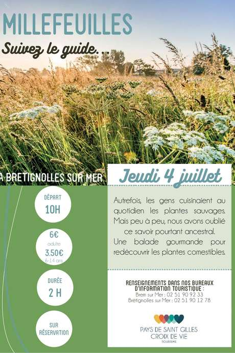 "VISITE GUIDEE ""MILLEFEUILLES"""