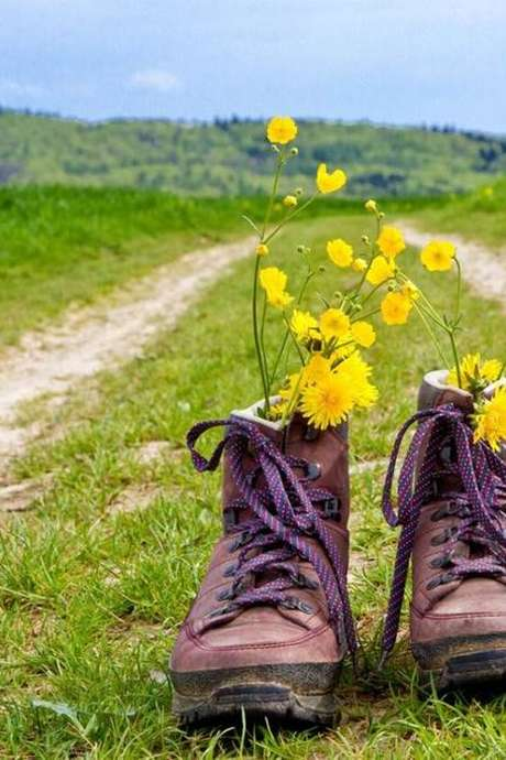 Randonnée de printemps
