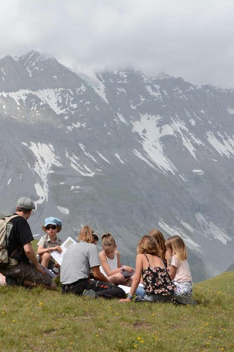 Atelier nature du Parc national de la Vanoise - Hauteur de vues
