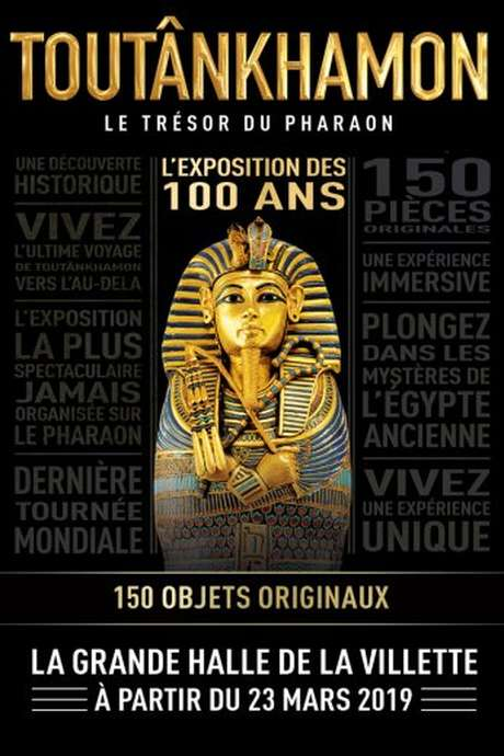 Tutankhamun - the Treasury of the Pharaoh