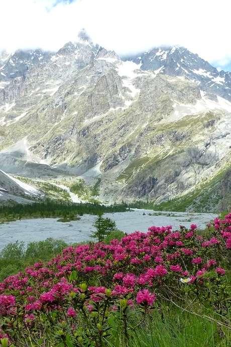 Sortie glaciologie : Le glacier blanc